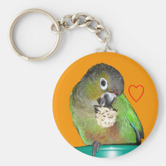 Green-cheeked conure keychain