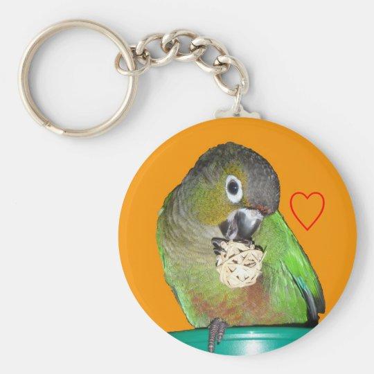 Green-cheeked conure keychain