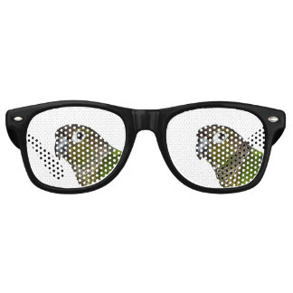 Green Cheeked Conure Retro Sunglasses