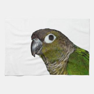 Green Cheeked Conure Tea Towel