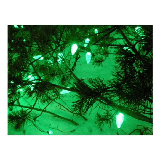 Green Christmas Lights Postcard