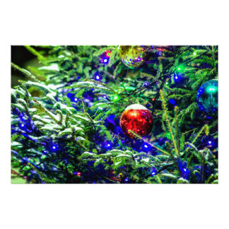 Green Christmas Tree Red Ball Photo