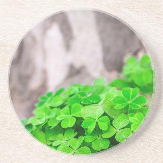 Green Clover Irish Sign Beverage Coaster