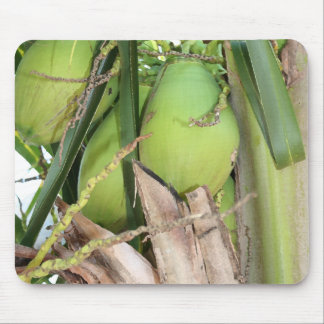 Green Coconuts Mousepd Mouse Pad