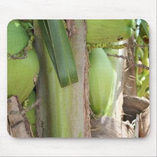 Green Coconuts Too Mousepad