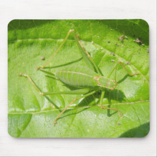 Green Cricket Camouflage Mousepad