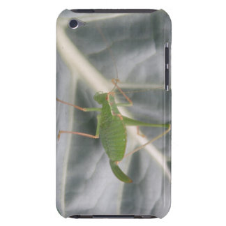Green Cricket Macro iPod Case iPod Touch Covers