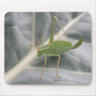 Green Cricket Macro Mousepad