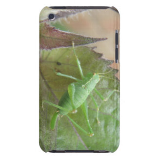Green Cricket on a Leaf iPod Case iPod Touch Covers