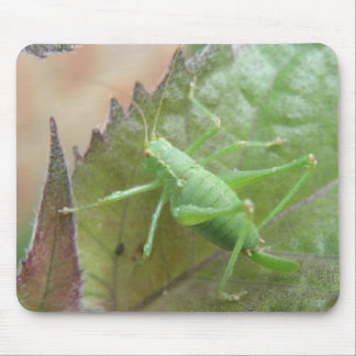 Green Cricket on a Leaf Mousepad