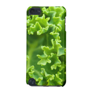 green curly cabbage iPod touch 5G case