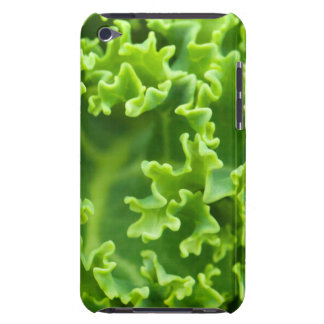 green curly cabbage iPod touch cover