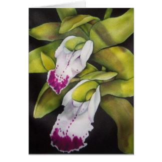 Green Cymbidium Orchid Card