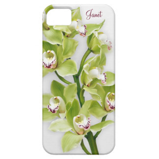 Green Cymbidium Orchid Floral iPhone 5 Case
