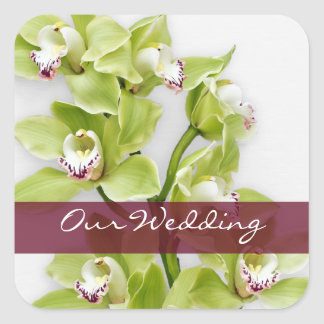 Green Cymbidium Orchid Wedding Square Stickers