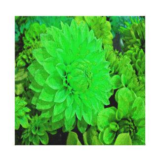 Green Dahlia's Gallery Wrap Canvas