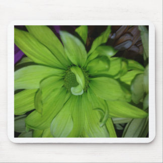 Green Daisies Mouse Pad