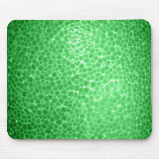 Green dragon skin, looks like dinosaur leather! mouse pad
