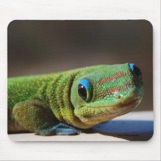 Green Dude Mouse Mat