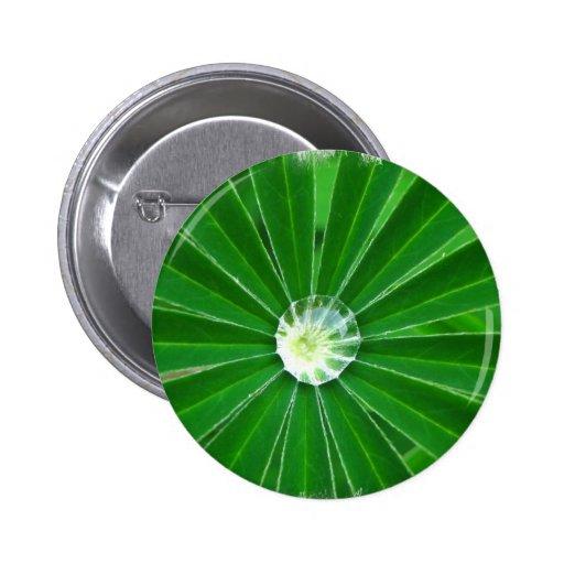 Green Energy  Button