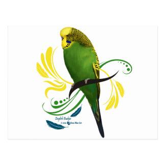 Green English Budgie Postcard