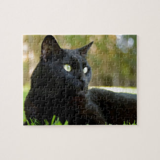 Green Eyed Black Cat Enjoying the Outdoors Jigsaw Puzzle