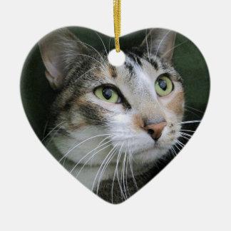 Green Eyed Cat Ceramic Heart Decoration