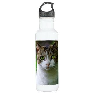 Green-eyed cat portrait 710 ml water bottle