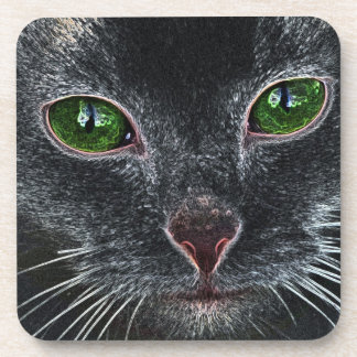 Green-eyed cat portrait drink coaster