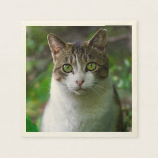Green-eyed cat portrait paper serviettes