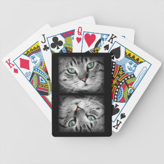 Green Eyed Gray Tiger Cat Bicycle Playing Cards