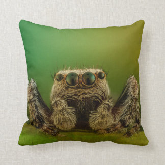 Green Eyed Jumping Spider Arachnology Cushion