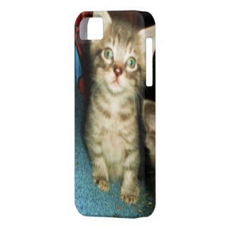 GREEN EYED KITTY iphone case iPhone 5 Covers