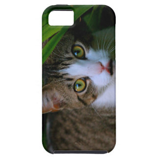 Green Eyed Kitty Tough iPhone 5 Case