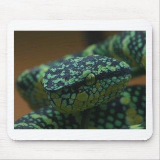 Green-Eyed Snake Mousepad