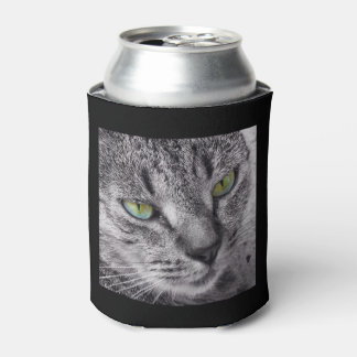 Green eyed tabby cat can cooler
