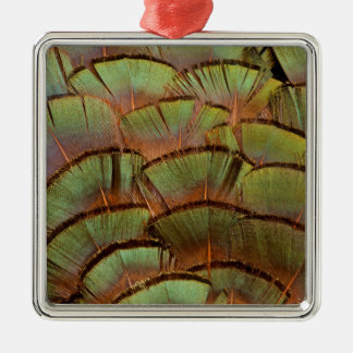 Green fanned Pheasant feather Silver-Colored Square Decoration