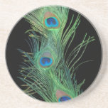 Green Feather with Black Feather Coaster