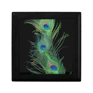 Green Feathers with Black Gift Box