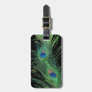 Green Feathers with Black Luggage Tag