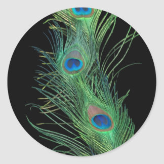 Green Feathers with Black Classic Round Sticker