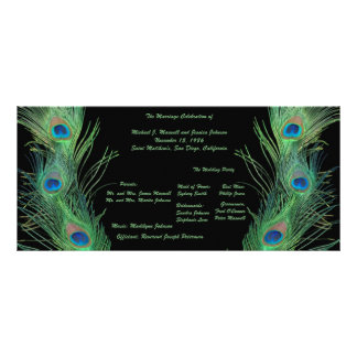 Green Feathers with Black Wedding Program Rack Card
