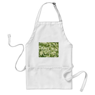 Green field with white daisies closeup standard apron