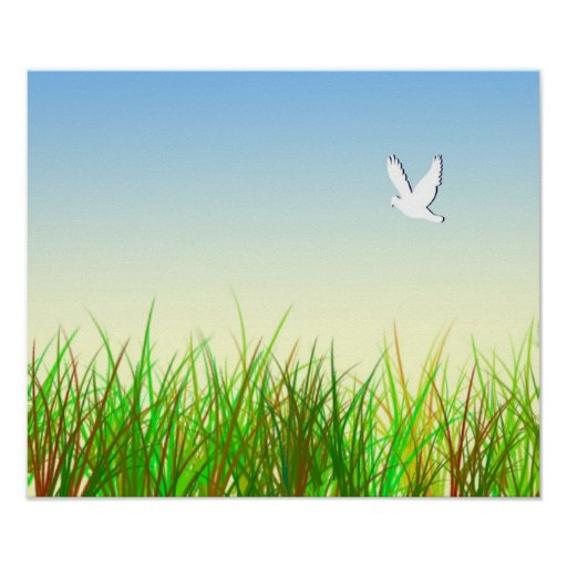Green field with White dove Poster