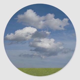 green filed, blue sky, white cloud classic round sticker