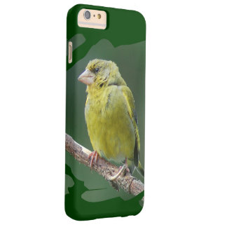 Green Finch - green finch - Verdier photo: JL Barely There iPhone 6 Plus Case