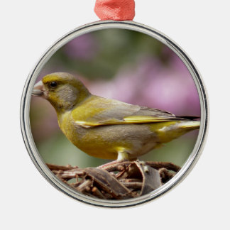 Green Finch Silver-Colored Round Decoration