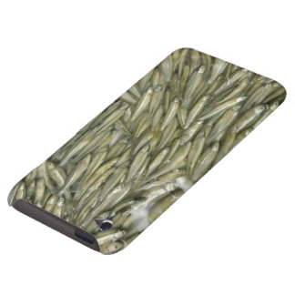 Green Fish iPod Touch Case