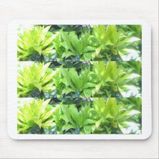 Green Flower Garden : Elegant Spring Blossom Mouse Pad