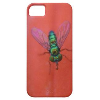Green Fly on Orange Flower Macro Photo iPhone 5 Cases